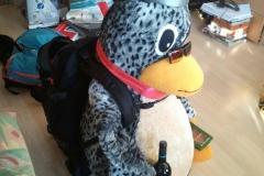Tux packt ein