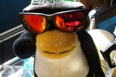 Hey, bin ich cool!